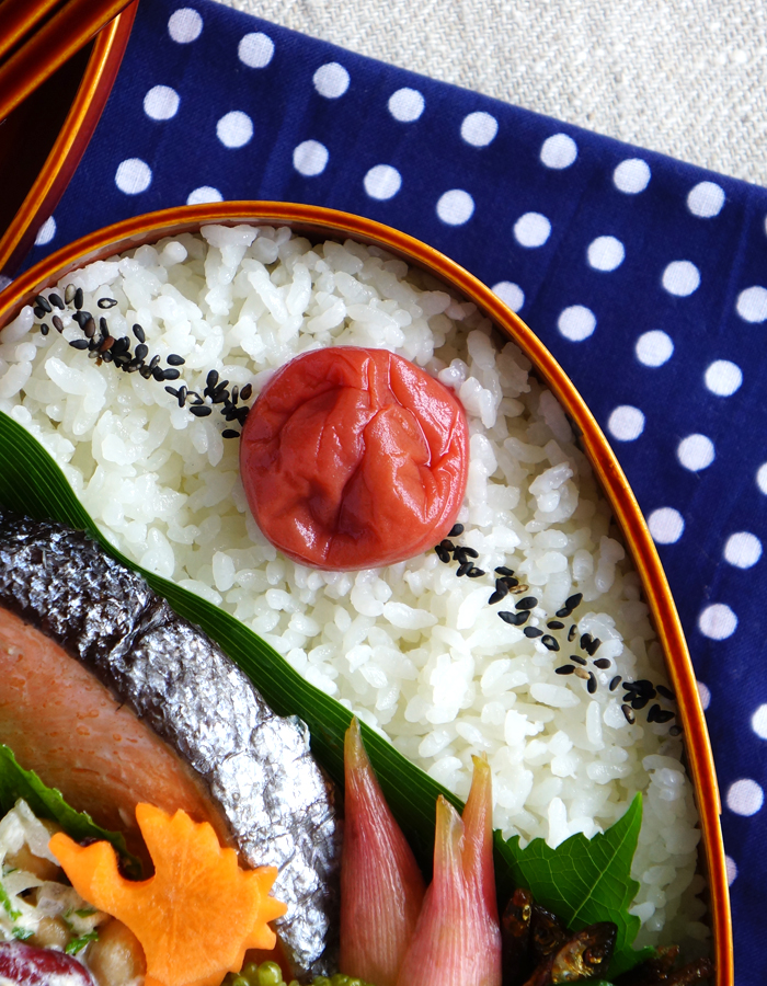 Shinmai rice and umeboshi
