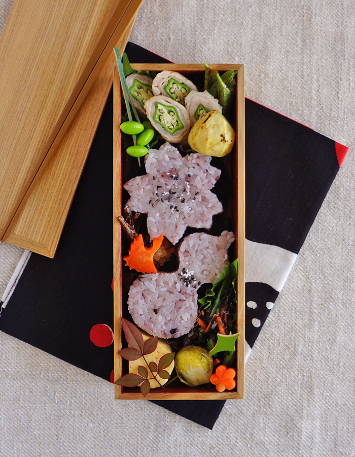 Sakura and gourd shaped rice balls bento/おにぎり弁当